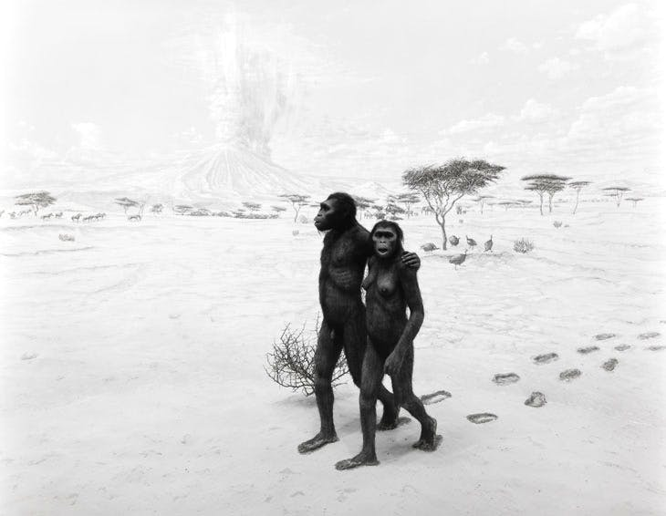Earliest Human Relatives (1994), Hiroshi Sugimoto. © The artist, Courtesy Sugimoto Studio