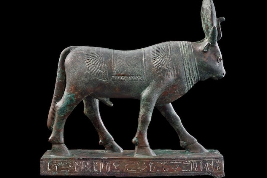 Inscribed Apis Bull, Late Period, 26th–30th Dynasty, c. 664–343 BC, Egyptian. Ariadne Galleries
