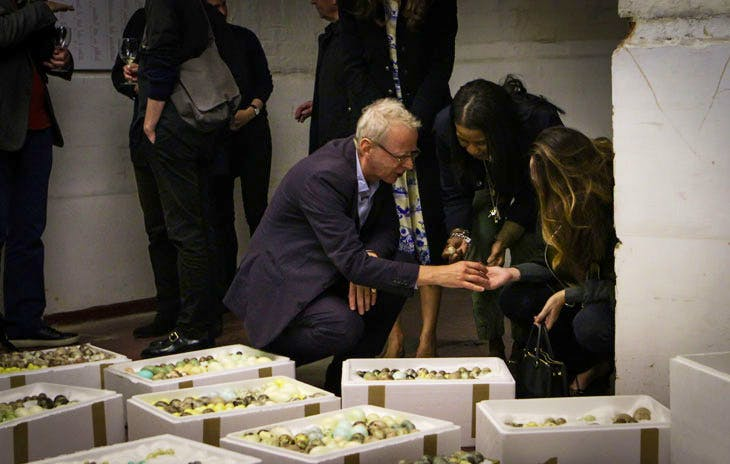 Visitors studying porcelain eggs that make up the installation 'How the Artist Was Led to the Study of Nature' (2017) by Andy Holden. 'Andy Holden & Peter Holden: Natural Selection' (2017), an Artangel commission. Photo: Liam White