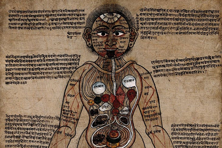 The Ayurvedic Man (18th century), Nepal. Wellcome Collection, London
