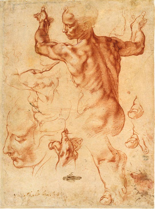 Studies for the Libyan Sibyl (recto); Studies for the Libyan Sibyl and a small Sketch for a Seated Figure (verso)(ca. 1510–11), Michelangelo. Courtesy of The Metropolitan Museum of Art