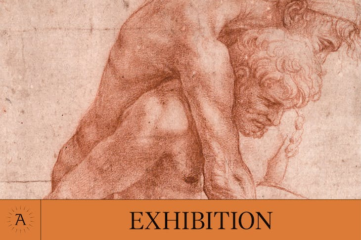 Exhibition of the Year - Apollo Awards 2017 - 'Raphael: The Drawings'