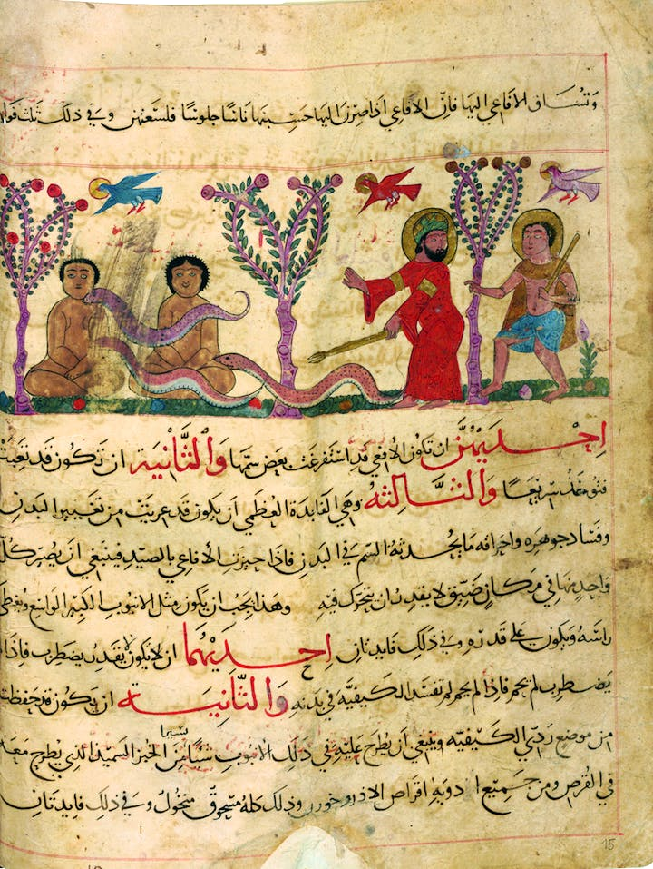 Viper hunt, from Theriaca book, c. 1220–40, Yaḥyā an-Naḥwī. Courtesy Martin-Gropius-Bau