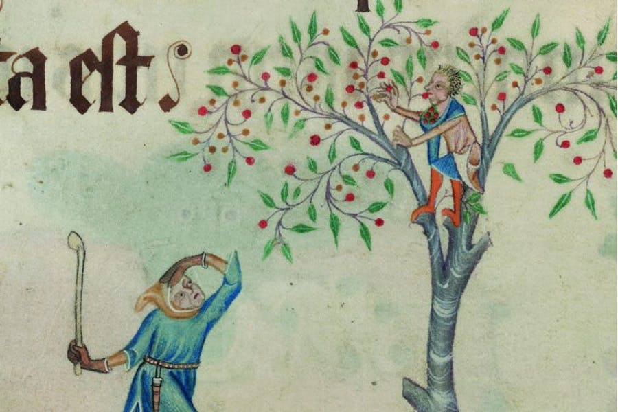 Detail from folio 196v of the Luttrell Psalter, (c. 1325–40), unknown artist; patron: Geoffrey Luttrell, British Library, London, photo: © British Library Board