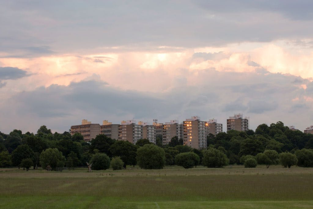 View of Alton Estate from Richmond Park, London