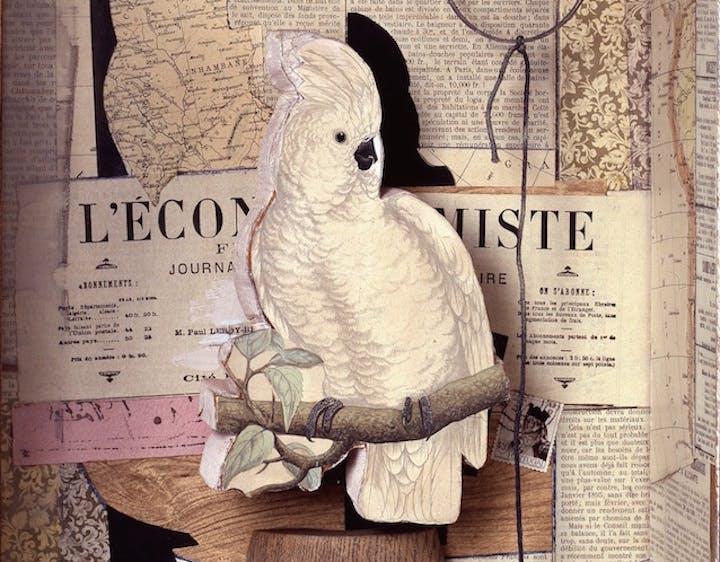 A Parrot for Juan Gris (1953–53/57), Joseph Cornell. © The Joseph and Robert Cornell Memorial Foundation/Licensed by VAGA, New York, NY