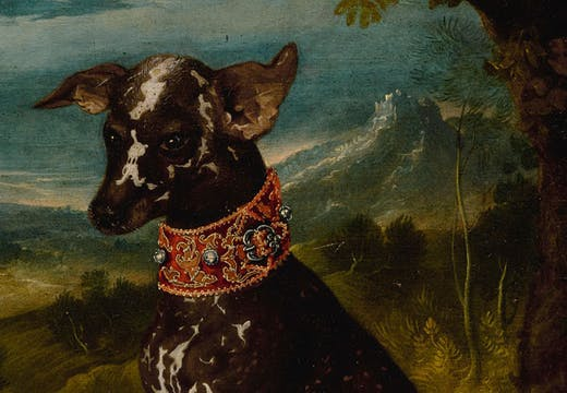 An exotic dog, the Mexican Xoloitzcuintli (c. 1580–1600), Prague School.