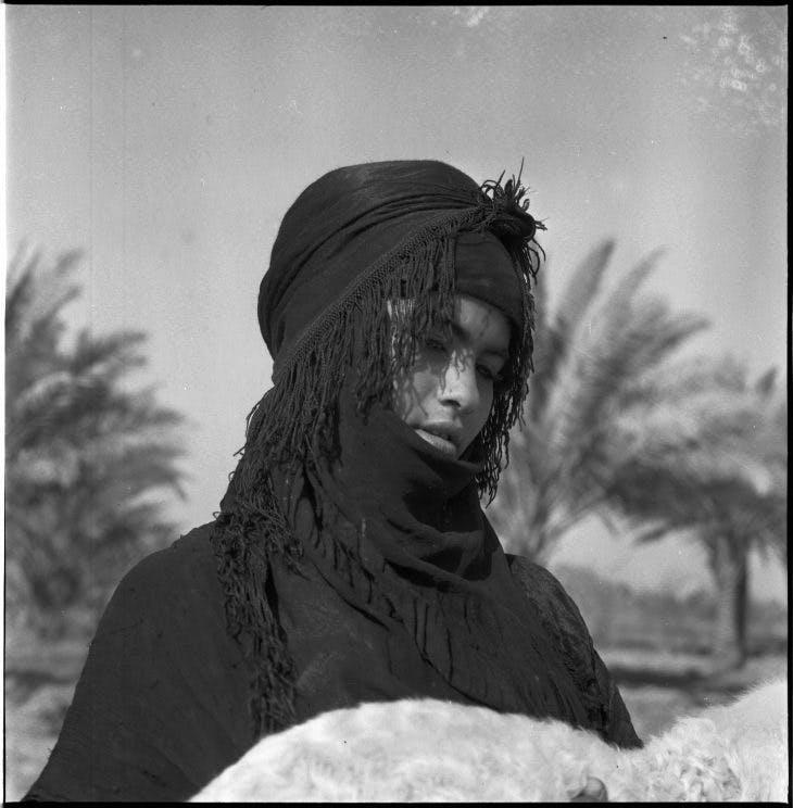 Shepherd, Latif Al-Ani