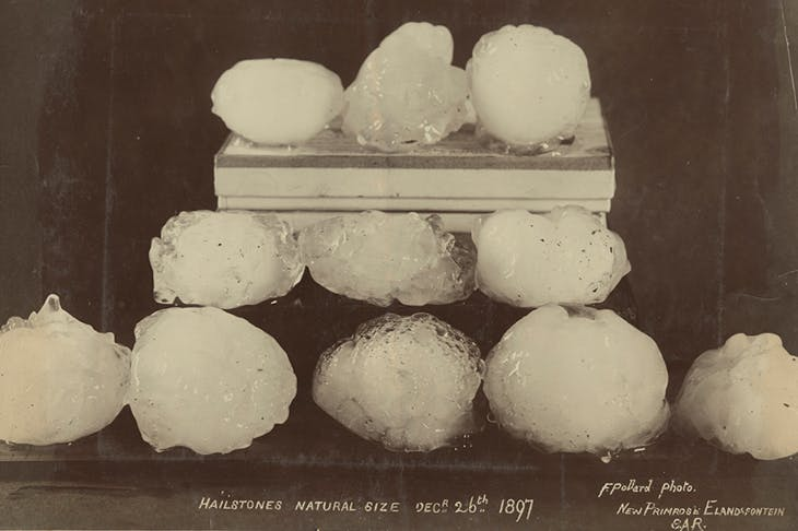 Hailstones, natural size (1897), F. Pollard. Courtesy Archive of Modern Conflict, London