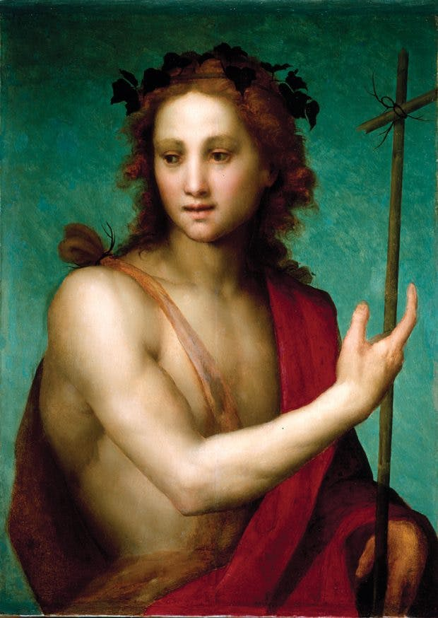 Saint John the Baptist (c. 1517), Andrea del Sarto, Worcester Art Museum, Massachusetts
