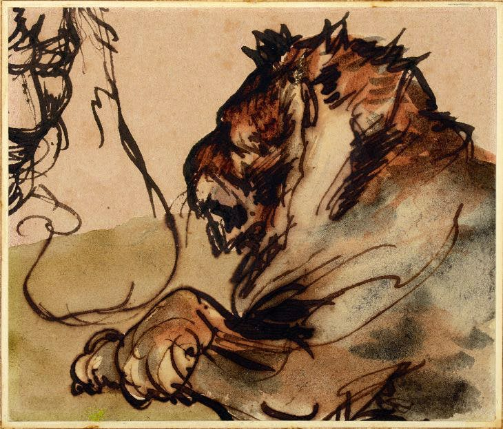 Study of a Lion at Rest, Théodore Géricault