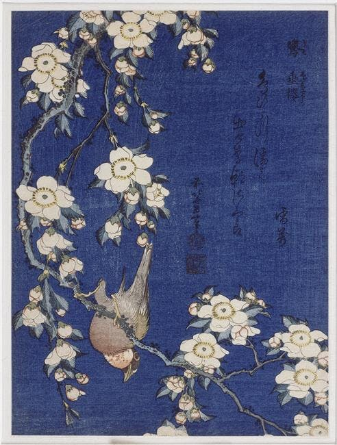 Bullfinch and Weeping Cherry, from a series known as Small Flowers and Birds, (c. 1834), Katsushika Hokusai, The Art Institute of Chicago.