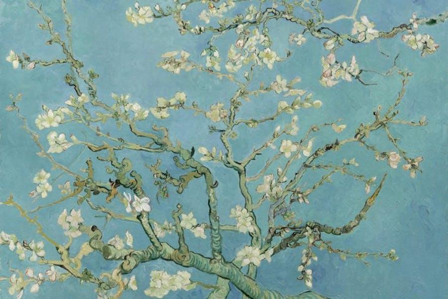 Almond Blossom, (1890), Vincent Van Gogh, Van Gogh Museum, Amsterdam