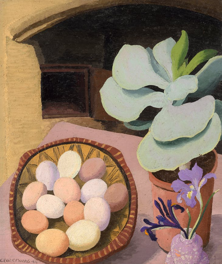 Cotyledon and Eggs, Sir Cedric Morris