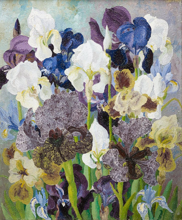 May Flowering Irises No. 2, Sir Cedric Morris