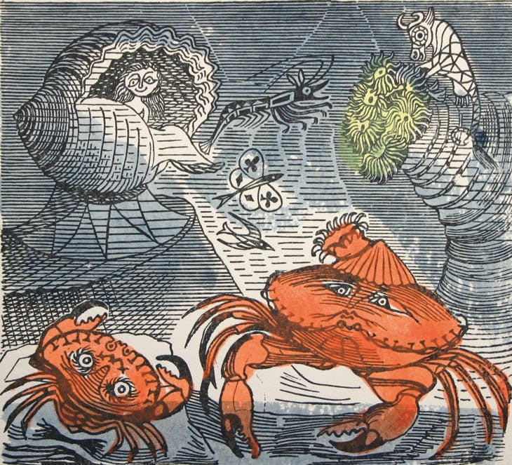 An Old Crab and a Young, Edward Bawden