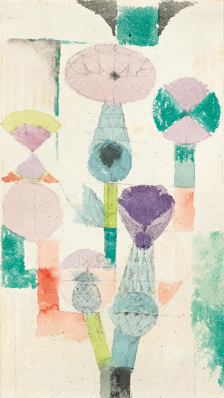 Consider the Thistle, Paul Klee