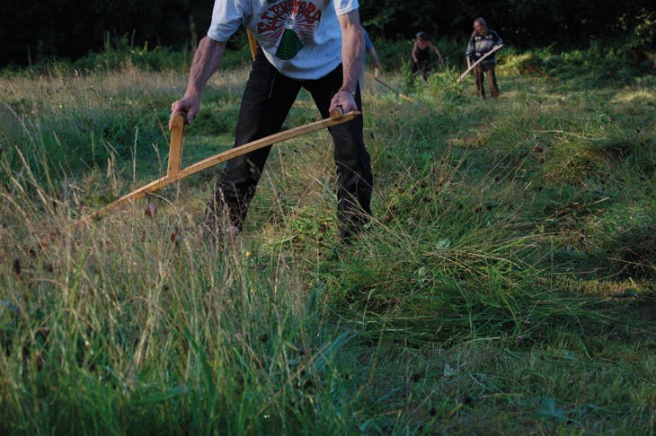 Scything, Tinker's Bubble from the project 'GB Farming' (2007), Georgina Barney.