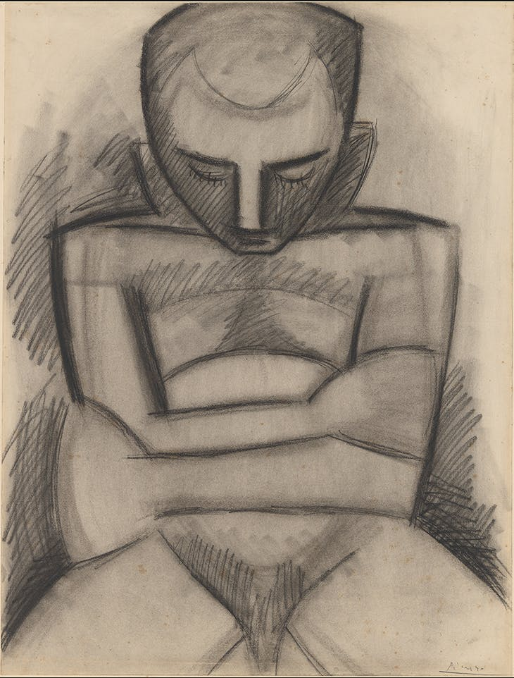 Seated Nude, Picasso