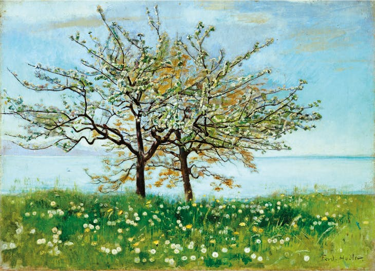 Spring Landscape with Flowering Trees, Ferdinand Hodler