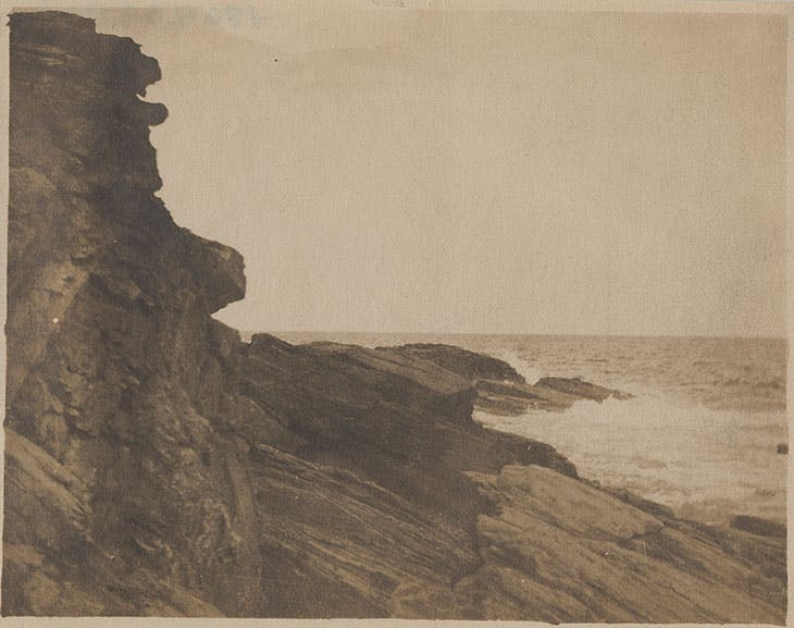 Cliff at Prout's Neck, Winslow Homer