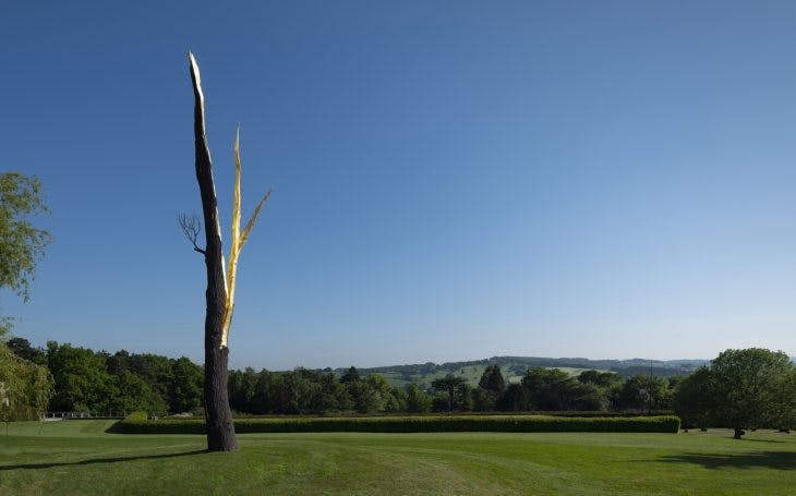 Lightning-struck Tree, (2012), Giuseppe Penone, Private collection, photo: © Jonty Wilde; courtesy the artist and Yorkshire Sculpture Park