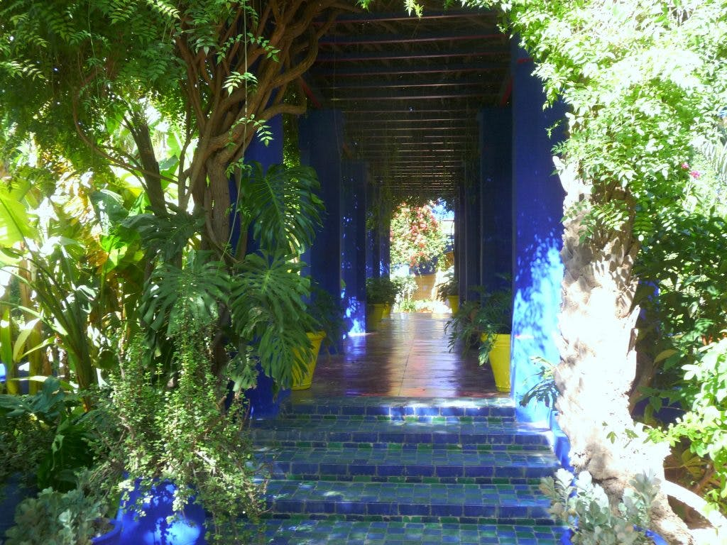 The Majorelle Garden, Marrakech, photo: Wikimedia Commons