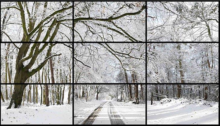 Woldgate Woods, Winter, David Hockney