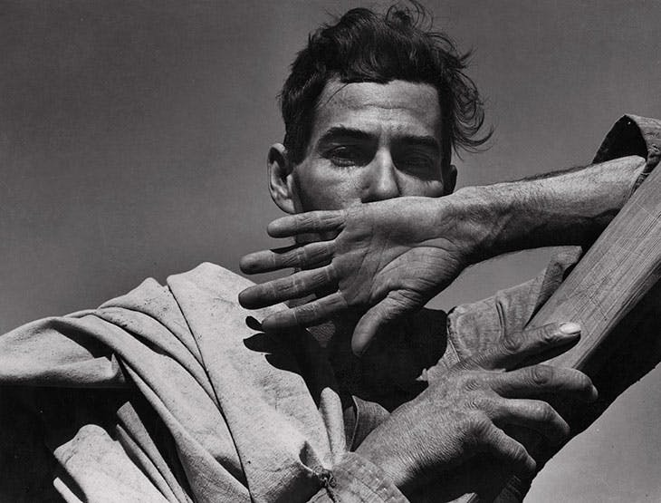 Migratory Cotton Picker, Eloy, Arizona (1940), Dorothea Lange.