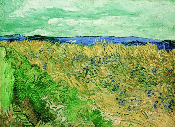 Wheatfield with Cornflowers, Vincent van Gogh