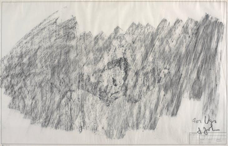 Skin, Jasper Johns