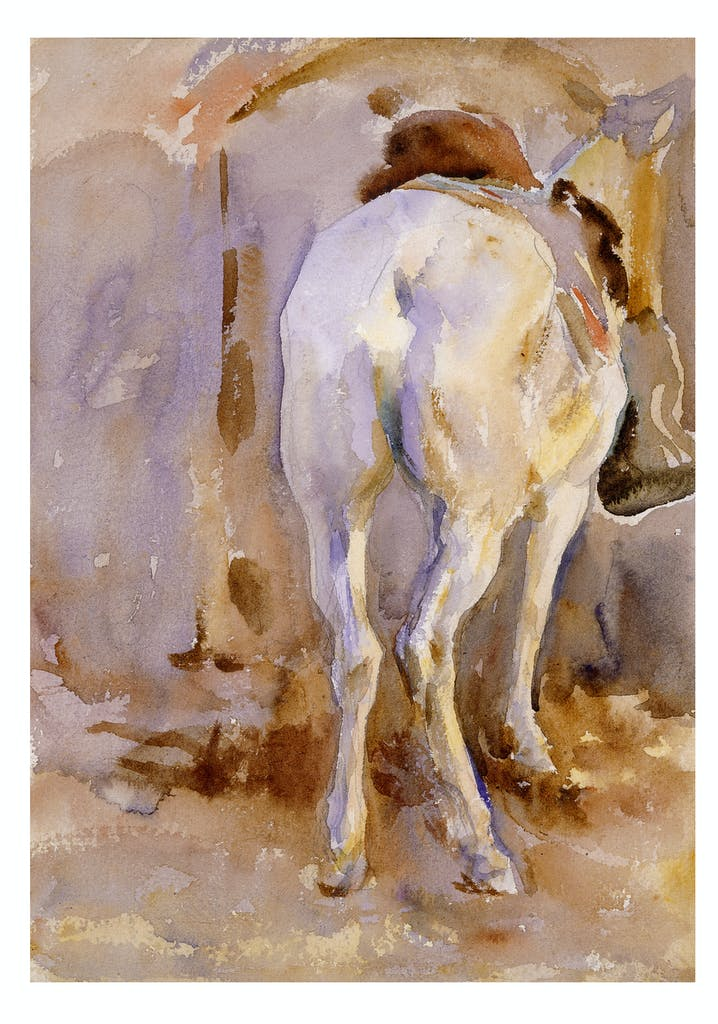 White Mule, (1905), John Singer Sargent, Private collection