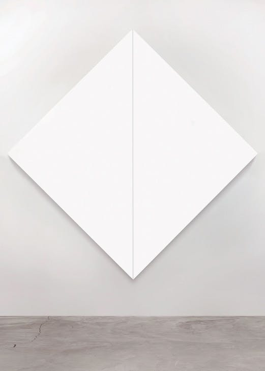 Untitled (White Diamond/Negative Stripe) (1965), Mary Corse.