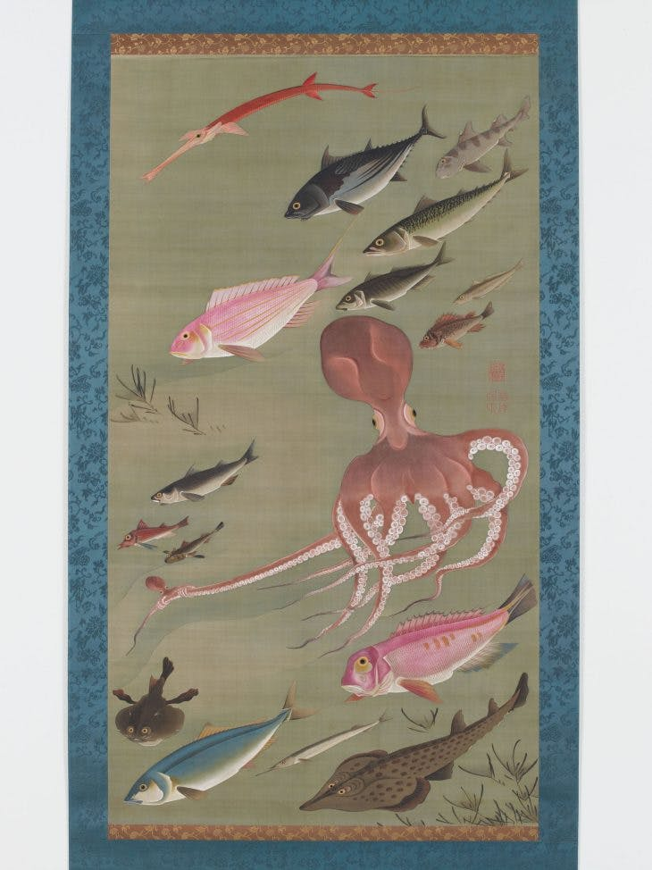 Fish and Octopus, Jakuchū