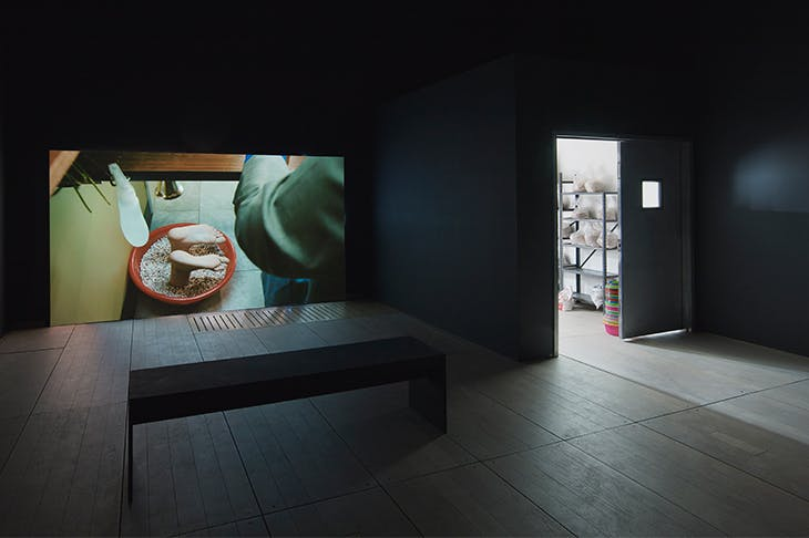 Installation view of 'Mika Rottenberg' at Goldsmiths Centre for Contemporary Art, 2018.