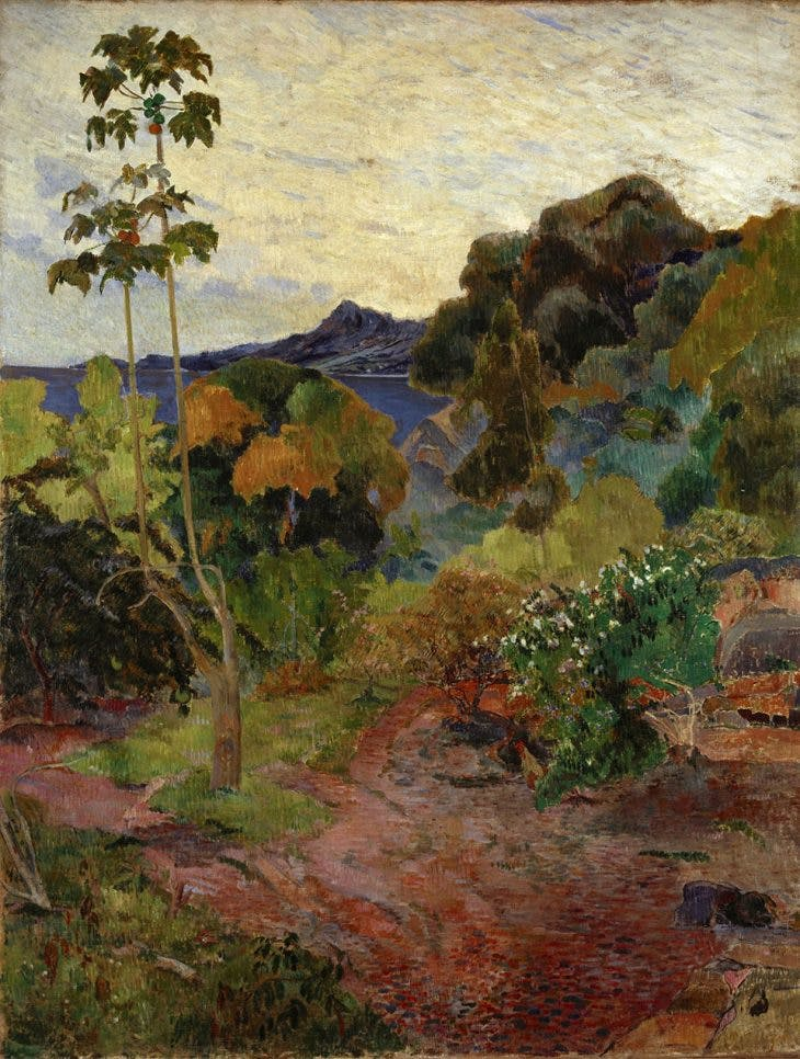 Martinique Landscape, Paul Gauguin