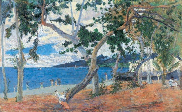 Coastline landscape (The Bay of Saint-Pierre, Martinique)
