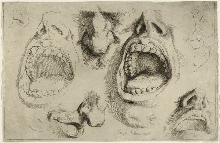 Studies of the Nose and Mouth (c. 1622), Jusepe di Ribera. ©The Trustees of the British Museum