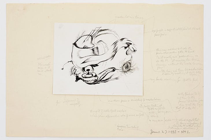 Small photograph with analysis of drawing by (1935), Reuben Mednikoff.