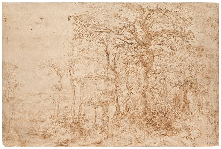 Sylvan Landscape with Five Bears, Pieter Bruegel