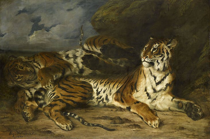 Young Tiger Playing with its Mother, (1830–31), Eugène Delacroix. Musée du Louvre.