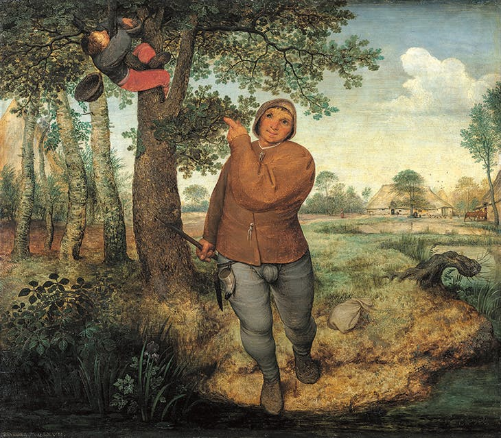 The Birdnester, Pieter Bruegel the Elder