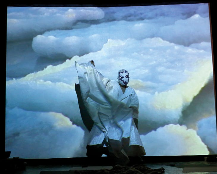 Reanimation (2010), Joan Jonas, photograph of performance at Performa 13, New York, 2013. Photo: © Paula Court; courtesy Museum of Fine Arts, Boston