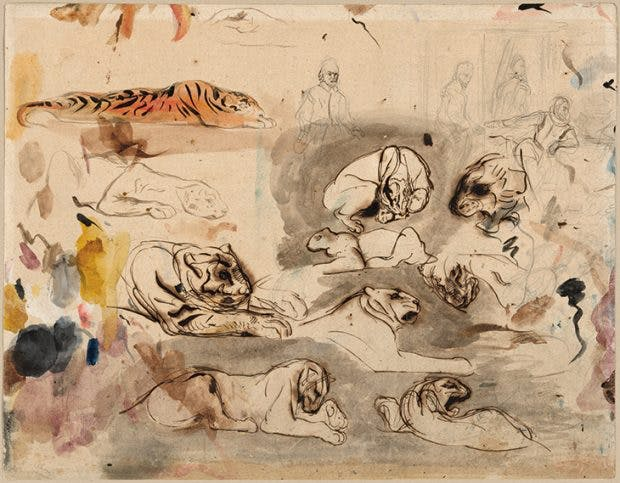 Sketches of Tigers and Men in Sixteenth-Century Costume, (c. 1828–29), Eugène Delacroix. The Art Institute of Chicago.