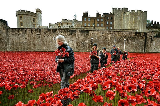 Volunteers dismantling the installation of Blood Swept Lands and Seas of Red at the Tower of London in 2014.