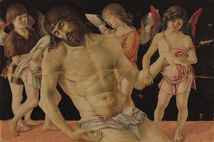 The Dead Christ Supported by Four Angels, Bellini