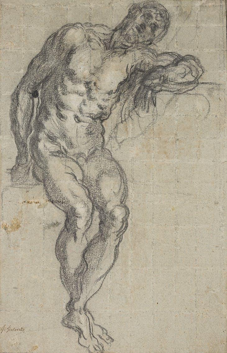 Seated Male Nude (c. 1549), Jacopo Tintoretto. Musée du Louvre, Paris