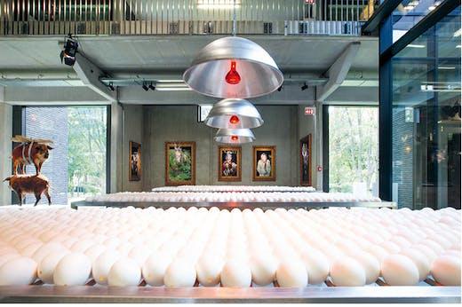 Inside Koen Vanmechelen's LABIOMISTA in Genk, Belgium