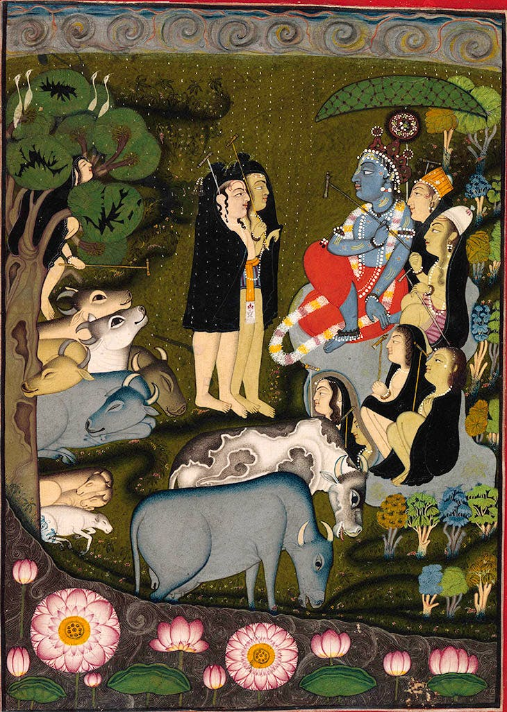 Krishna and the Gopas (Cowherders) Celebrate the Start of the Rainy Season (c. 1725–50), folio from a dispersed Bhagavata Purana, attributed to the Master of the Swirling Skies