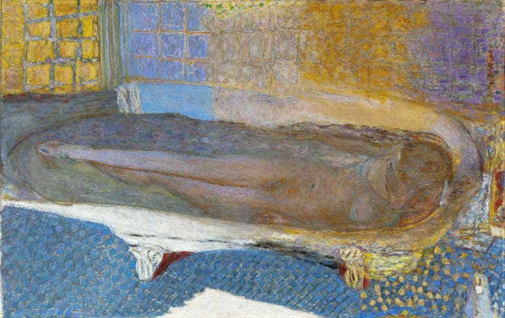 Nude in the Bath, Bonnard